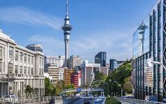 新西兰奥克兰大学-学校建筑