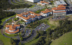 新西兰奥克兰大学-校园风光